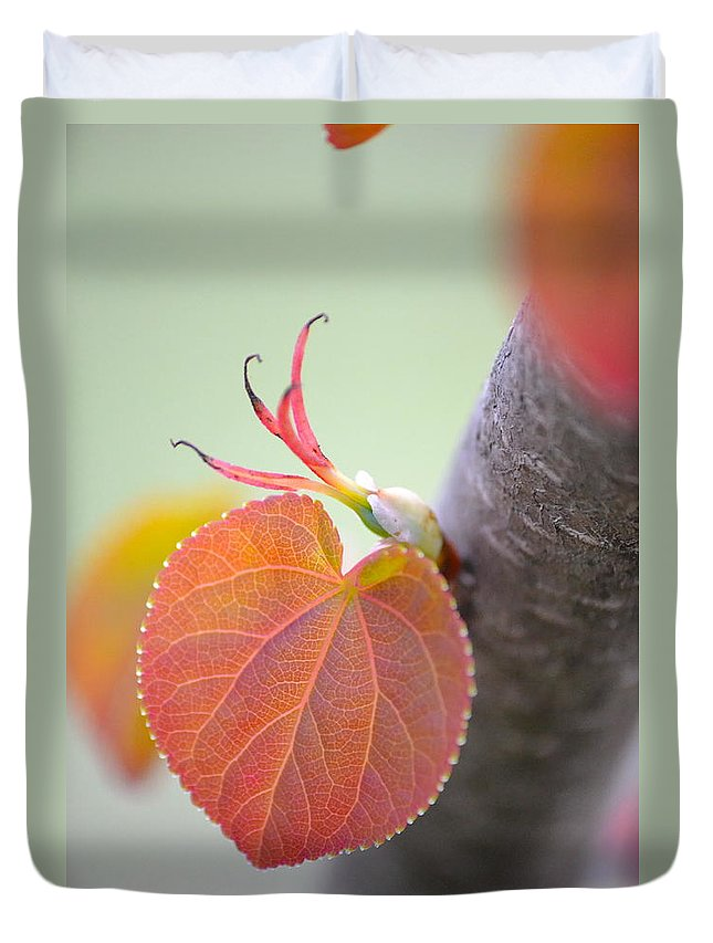 Heart Duvet Cover featuring the photograph Budding Heart by JD Grimes
