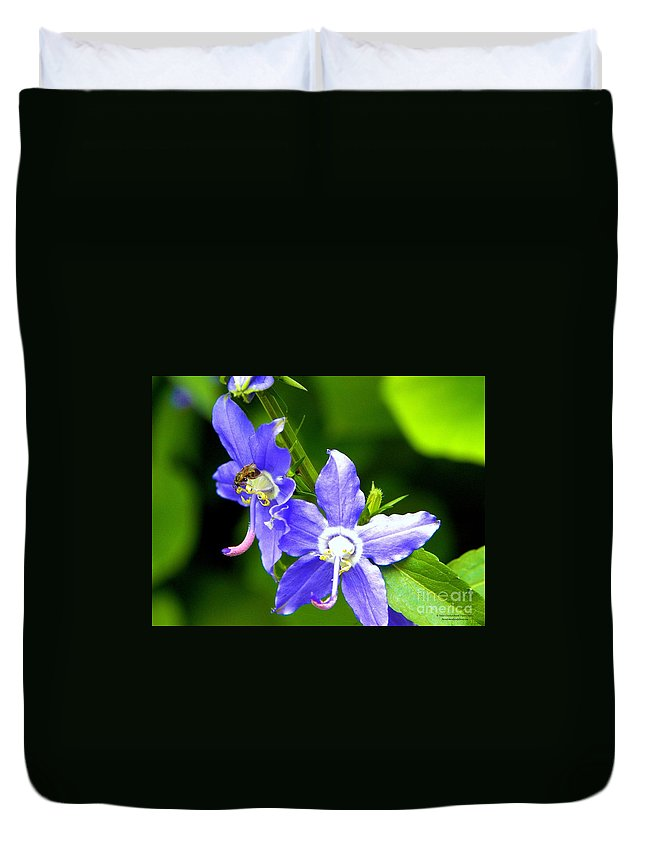 Flower Duvet Cover featuring the photograph Bug On Blue by Tisha Clinkenbeard