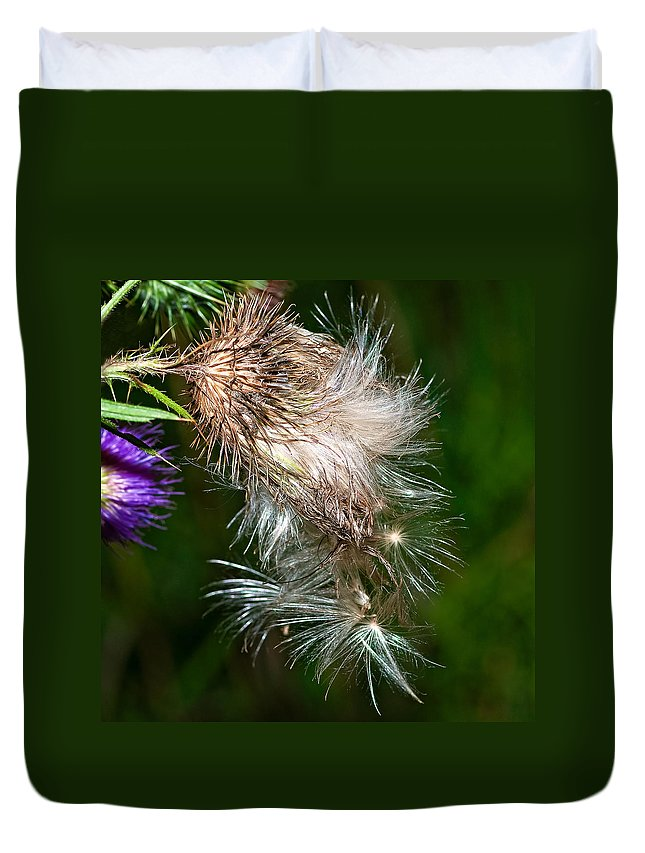 Flowers Duvet Cover featuring the photograph Bull Thistle by Steve Harrington