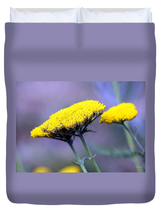 Flowers Duvet Cover featuring the photograph Butter Weeds by Deborah Crew-Johnson