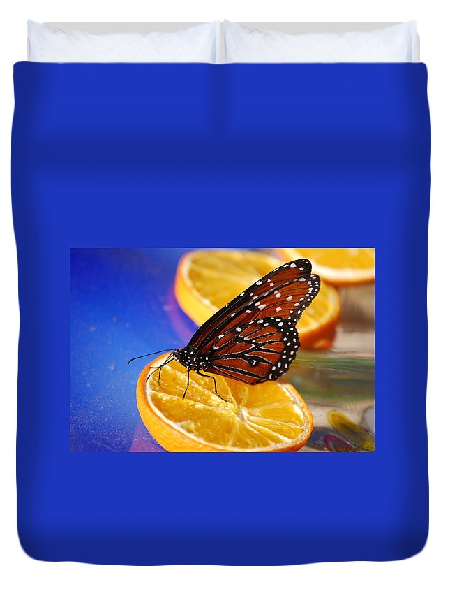 Butterfly Duvet Cover featuring the photograph Butterfly Nectar by Tam Ryan