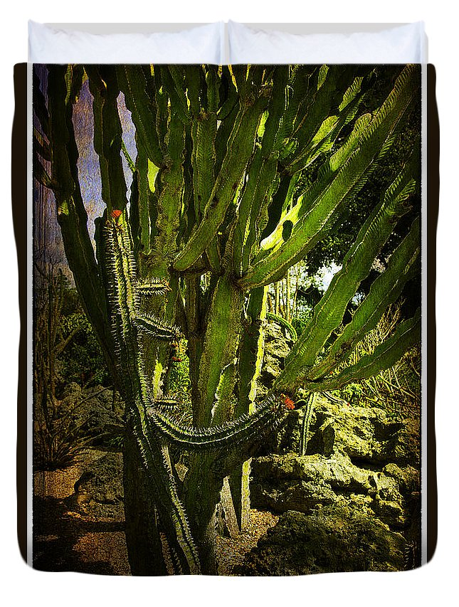 Cactus Duvet Cover featuring the photograph Cactus Flower by Madeline Ellis