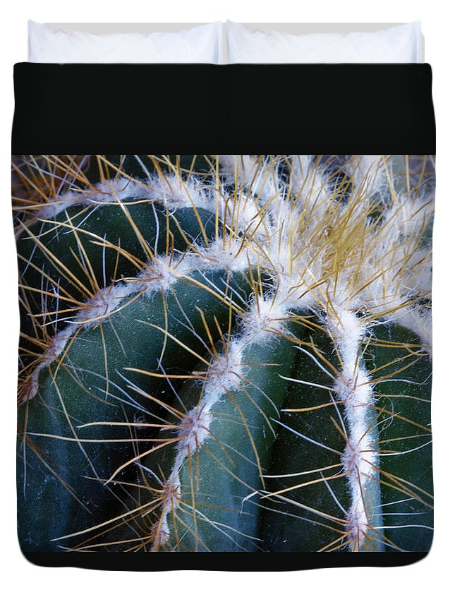 Cactus Duvet Cover featuring the photograph Cactus I by Linda Dunn
