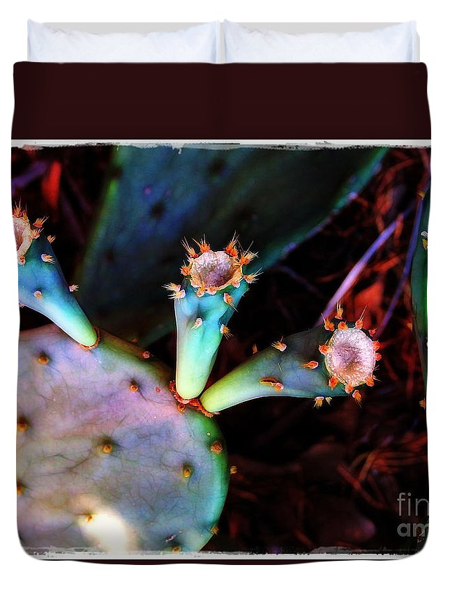 Cactus Duvet Cover featuring the photograph Cactus by Judi Bagwell