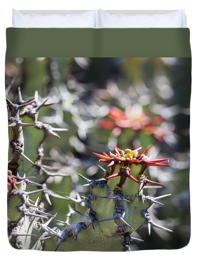 Ralf Duvet Cover featuring the photograph Cactus by Ralf Kaiser