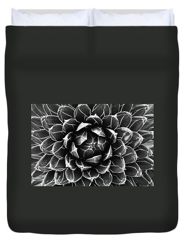 Cactus Duvet Cover featuring the photograph Cactus by Sumit Mehndiratta
