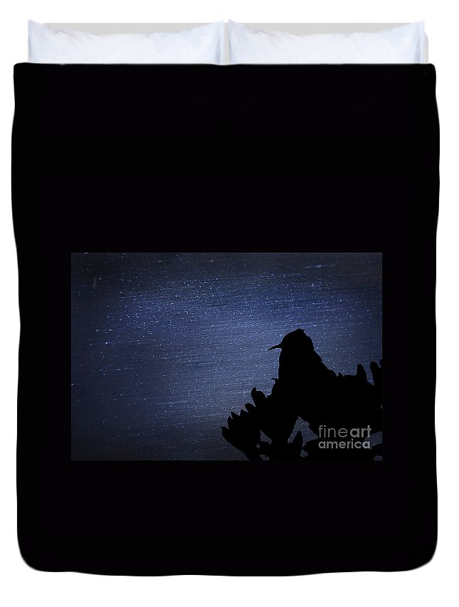 Fine Art Duvet Cover featuring the photograph Cactus Wren In The Night by Donna Greene