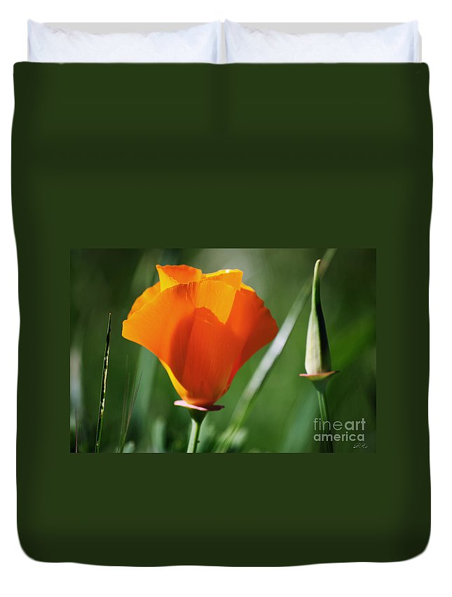 California Poppy Duvet Cover featuring the photograph California Poppy Iv by Diego Re