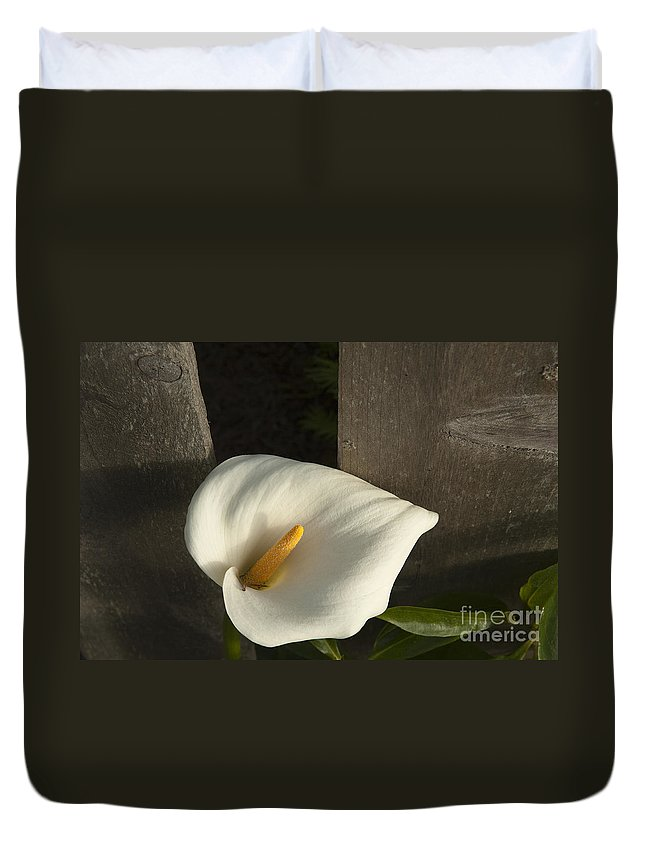 Sandra Bronstein Duvet Cover featuring the photograph Calla Lily And Fence by Sandra Bronstein