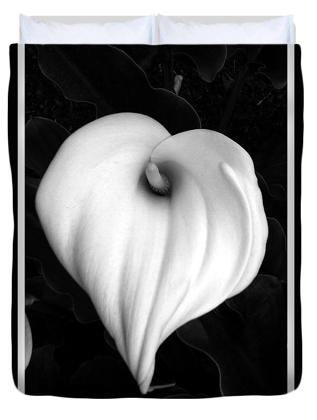 Calla Lily Duvet Cover featuring the photograph Calla Lily In Black And White by Carol Sturman