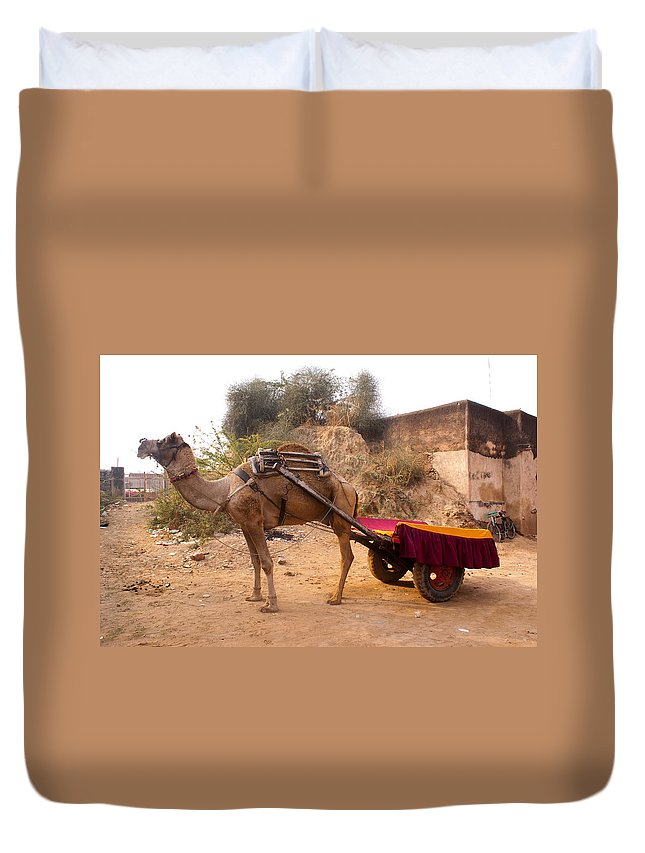Ship Of The Desert Duvet Cover featuring the photograph Camel Yoked To A Decorated Cart Meant For Carrying Passengers In India by Ashish Agarwal