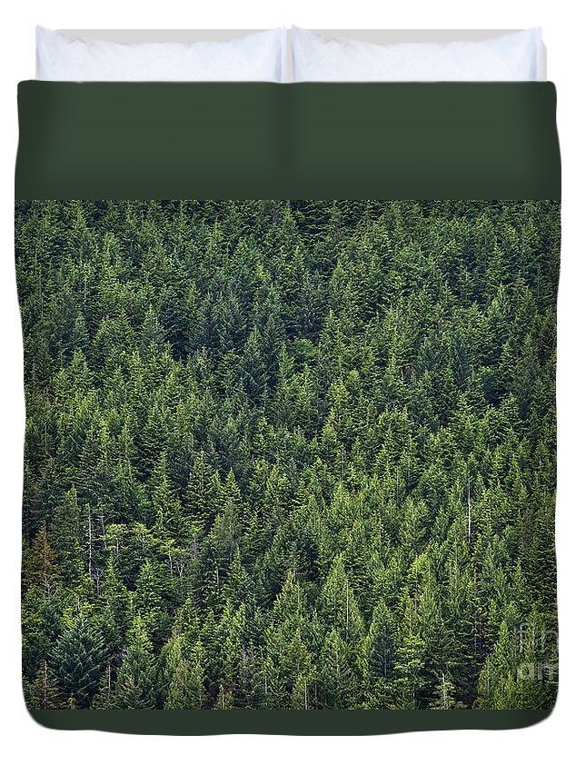 B.c. Duvet Cover featuring the photograph Canadian Boreal Forest. by John Greim