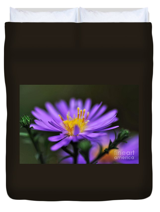 Photography Duvet Cover featuring the photograph Candles On A Daisy by Kaye Menner