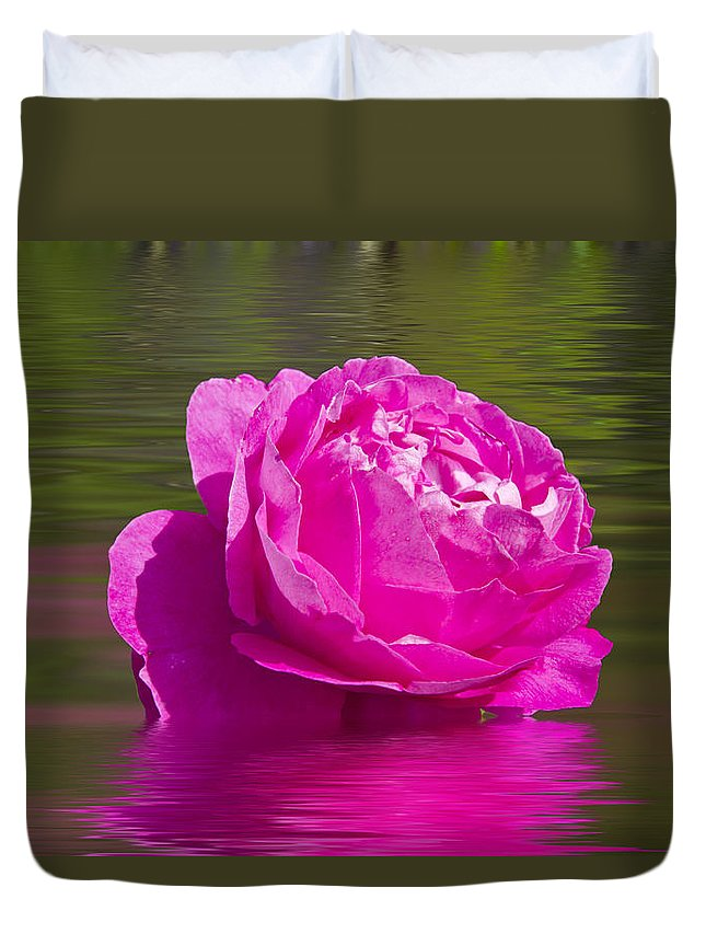 Rose Duvet Cover featuring the photograph Candy Pink Rose by David French