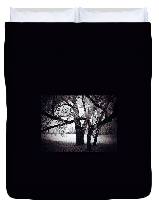 Elm Framed Prints Framed Prints Duvet Cover featuring the photograph Captions Cradle by The Artist Project