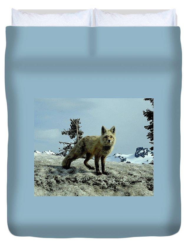 Cascade Red Fox Duvet Cover featuring the photograph Cascade Red Fox 2 by Peter Mooyman