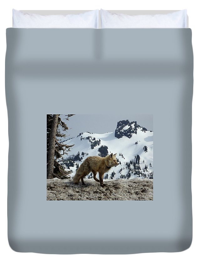 Cascade Red Fox Duvet Cover featuring the photograph Cascade Red Fox 3 by Peter Mooyman