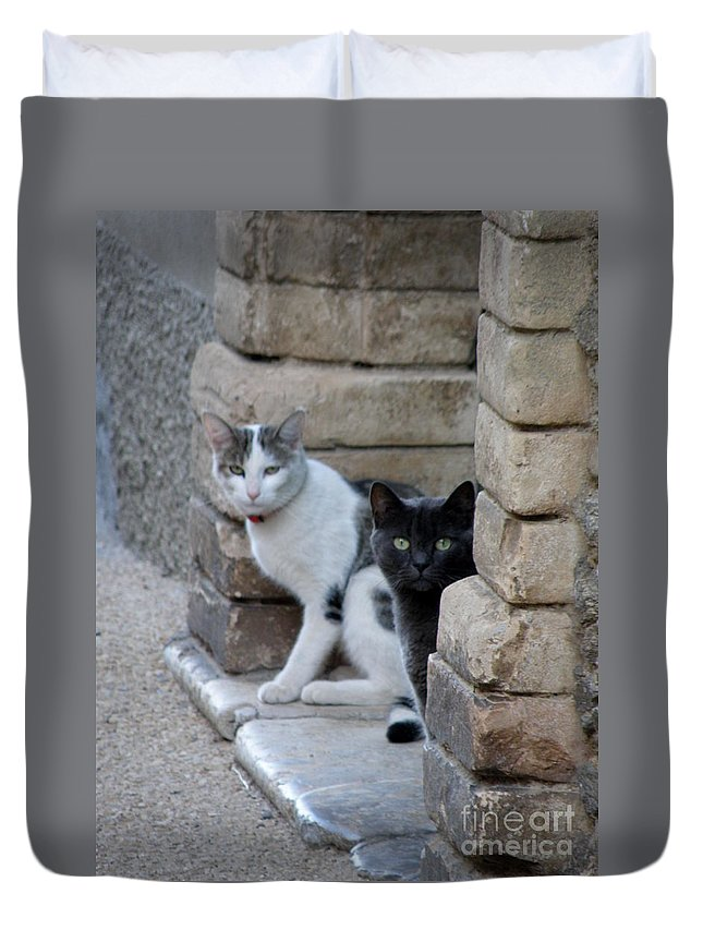 Cats Duvet Cover featuring the photograph Cat Guardians by Lainie Wrightson