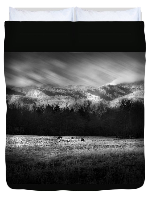 Cataloochee Duvet Cover featuring the photograph Cataloochee Elk Grazing The Fields by Gray Artus