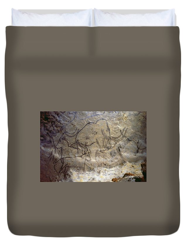 10 Duvet Cover featuring the photograph Cave Art - Mammoth And Ibexes by Granger