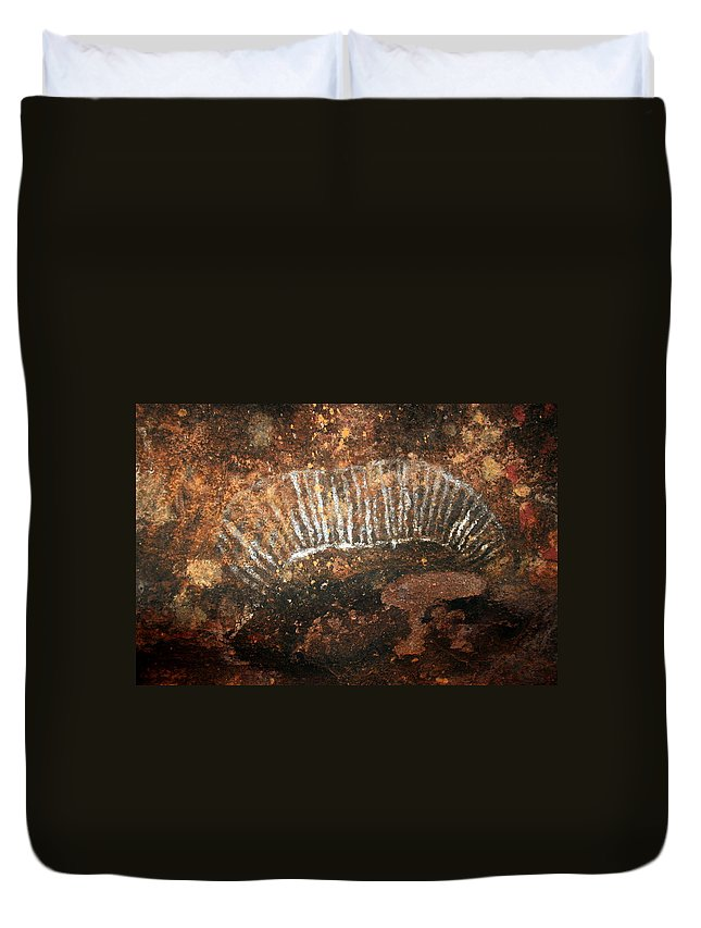 Witchittey Grub Duvet Cover featuring the photograph Cave Painting Of A Witchittey Grub by Laurel Talabere