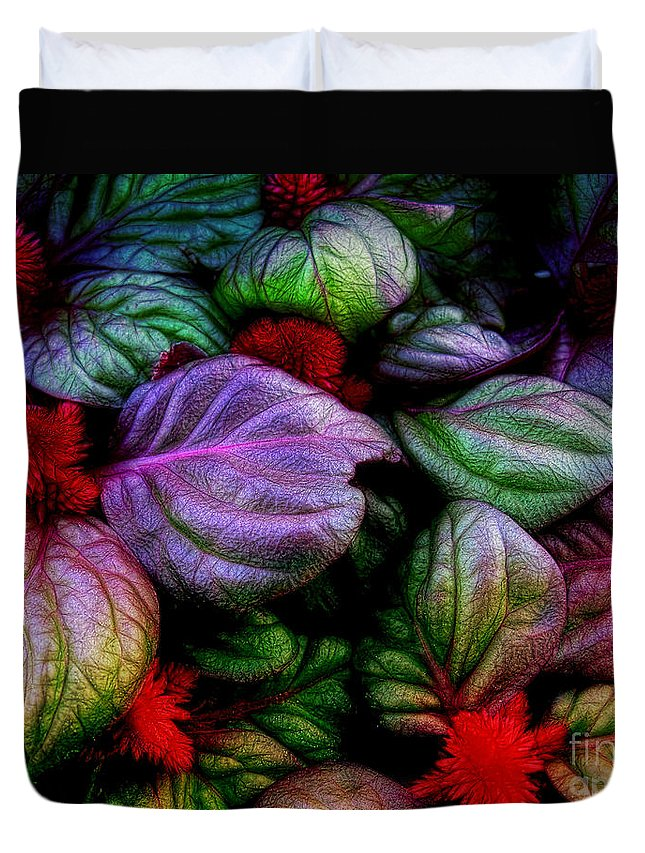Celosia Duvet Cover featuring the photograph Celosia by Judi Bagwell