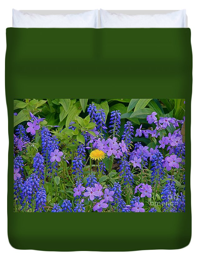 Taraxacum Officinale Duvet Cover featuring the photograph Center Stage Blonde by Byron Varvarigos