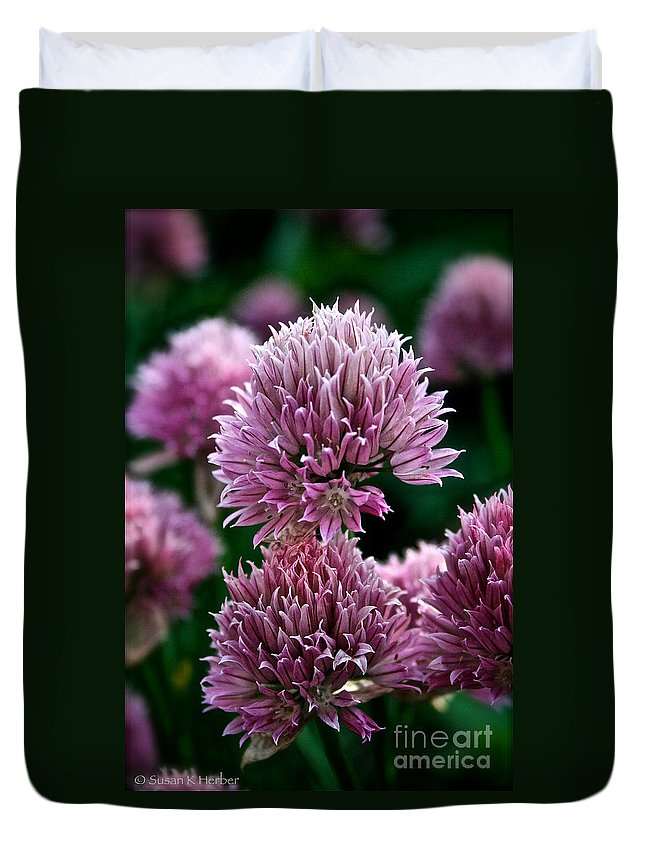Plant Duvet Cover featuring the photograph Chive Blossom by Susan Herber