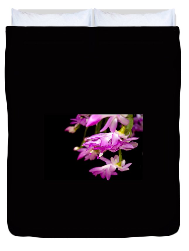 Christmas Cactus Duvet Cover featuring the photograph Christmas Cactus by Carolyn Marshall