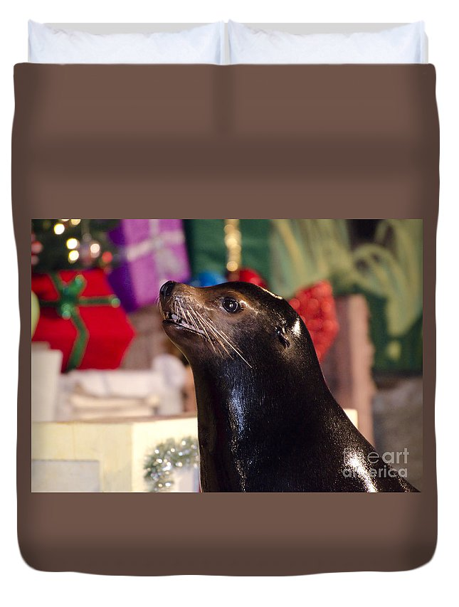 Sea Lion Duvet Cover featuring the photograph Christmas Sea Lion by Jim And Emily Bush