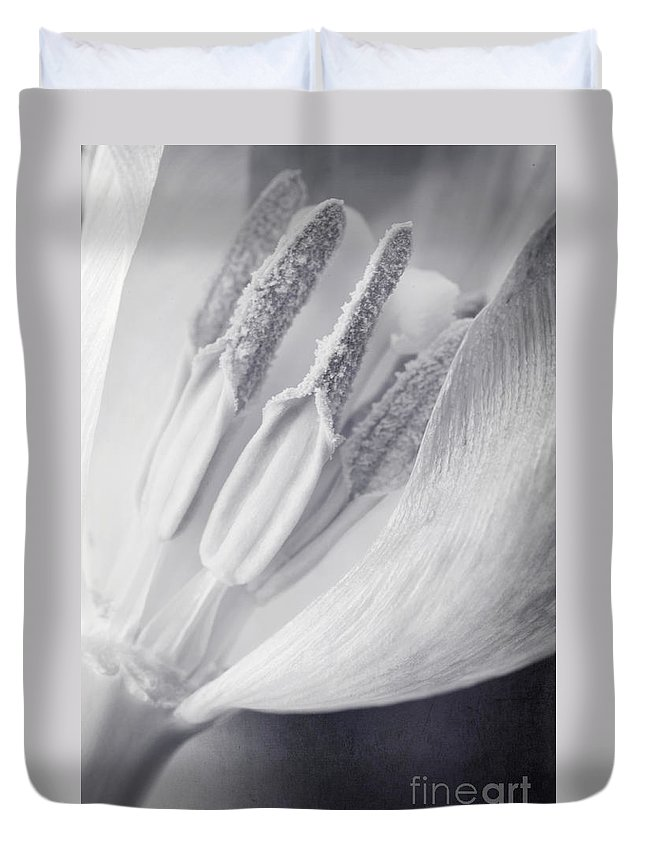 Tulip Duvet Cover featuring the photograph Clear by Priska Wettstein