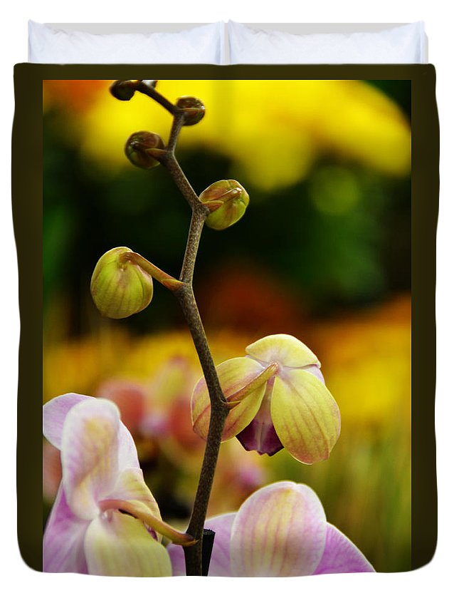 Flowers Duvet Cover featuring the photograph Climbing Slowly by Angelina Vick