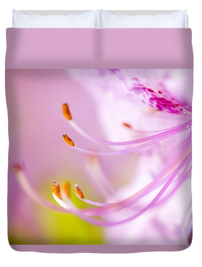 Beauty In Nature Duvet Cover featuring the photograph Close Up Of A Pink Flower by Craig Tuttle