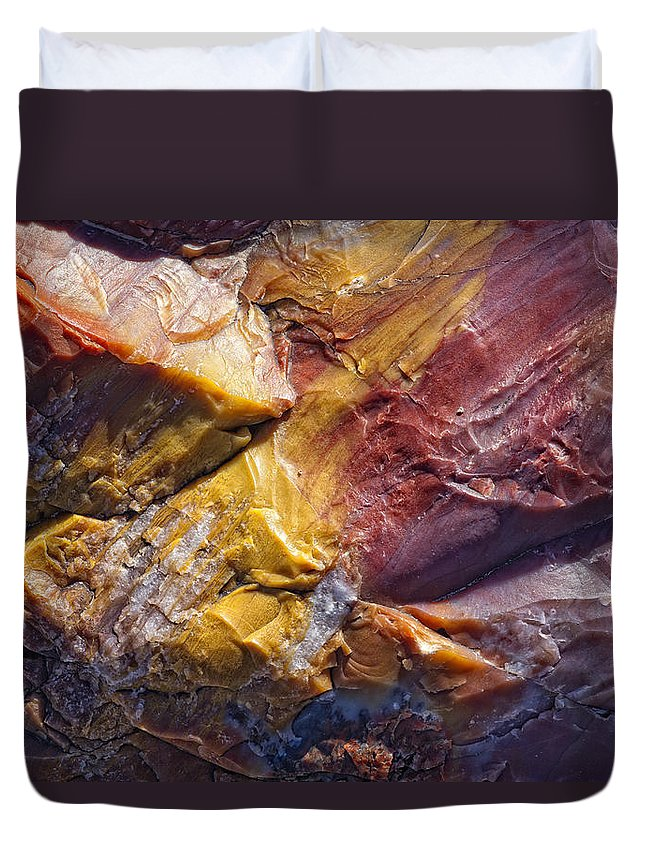 Light Duvet Cover featuring the photograph Close Up Of Petrified Wood, Petrified by Robert Postma