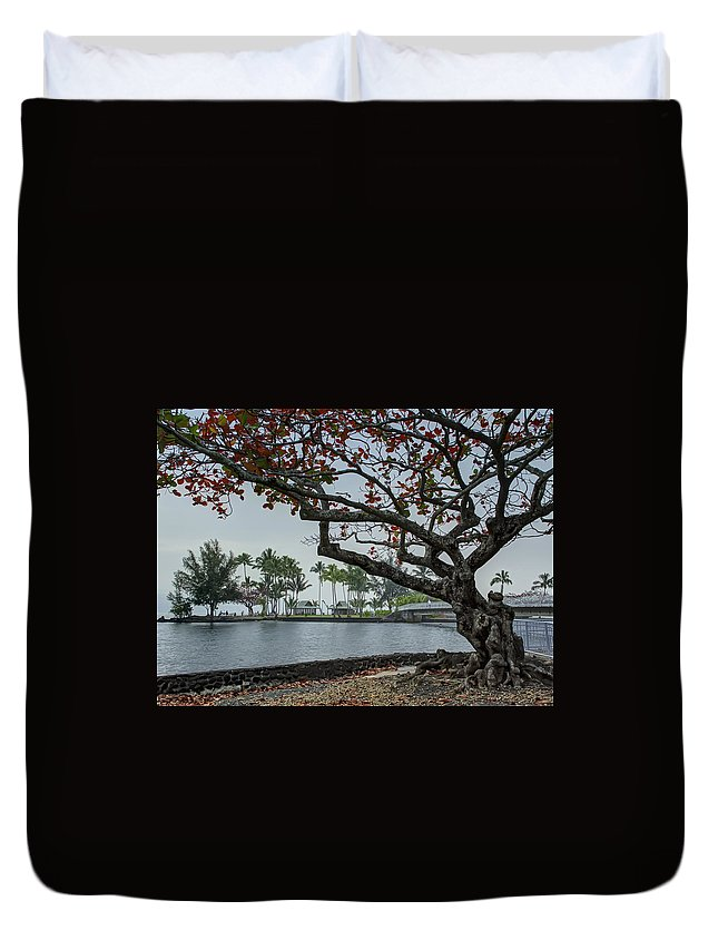 Hilo Duvet Cover featuring the photograph Coconut Island In Hilo Bay Hawaii by Daniel Hagerman
