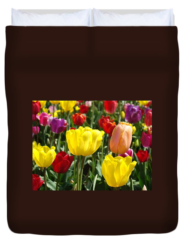 Tulip Duvet Cover featuring the photograph Colorful Bright Tulip Flowers Field Tulips Floral Art Prints by Baslee Troutman
