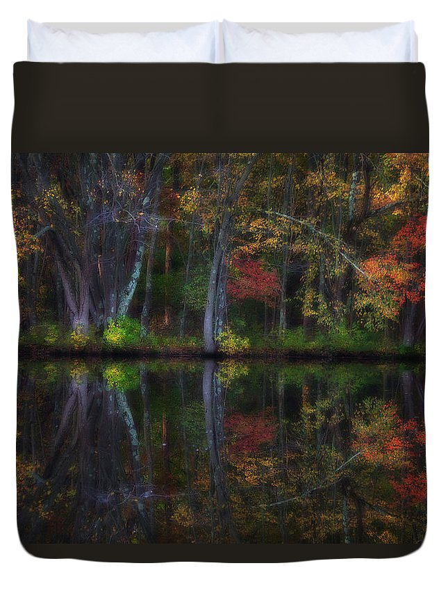 Woods Duvet Cover featuring the photograph Colorful Forest by Karol Livote