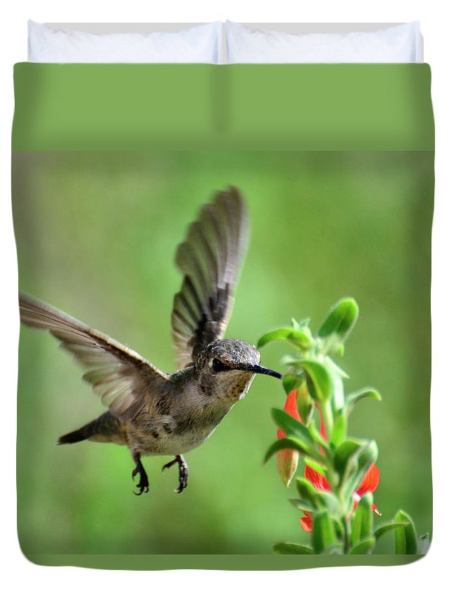 Hummingbird Duvet Cover featuring the photograph Come Fly With Me by Saija Lehtonen