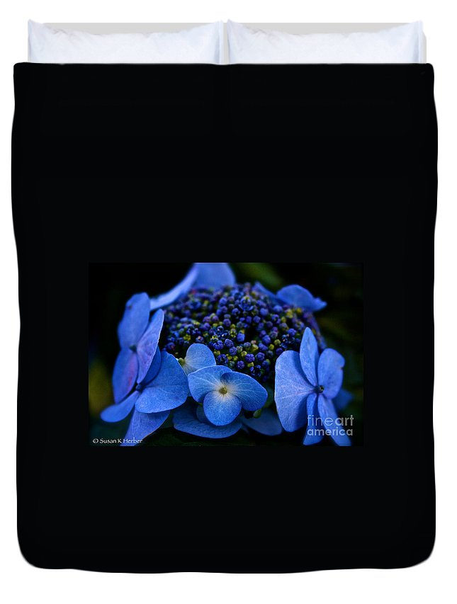 Hydrangea Duvet Cover featuring the photograph Coming Out by Susan Herber