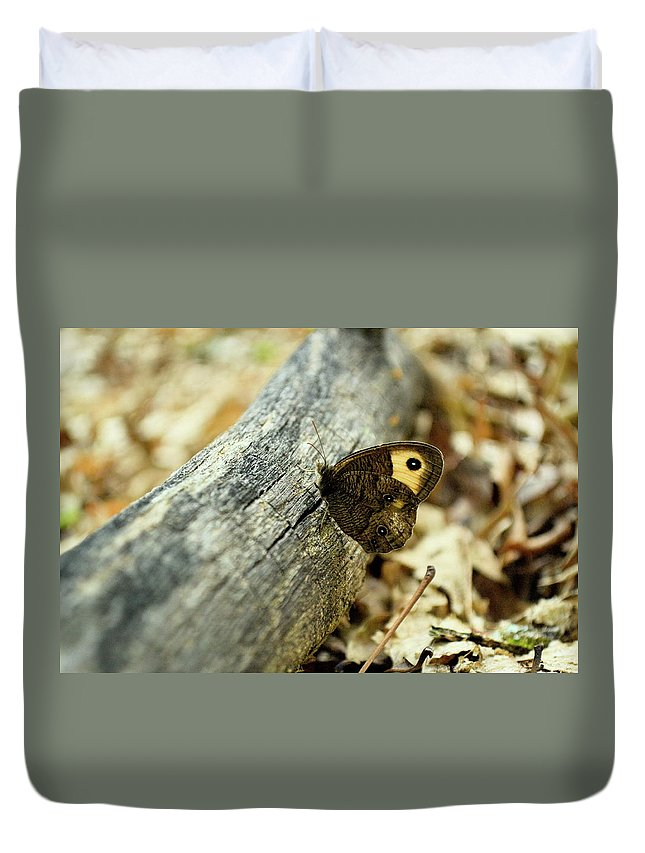 Common Duvet Cover featuring the photograph Common Wood-nymph by JD Grimes
