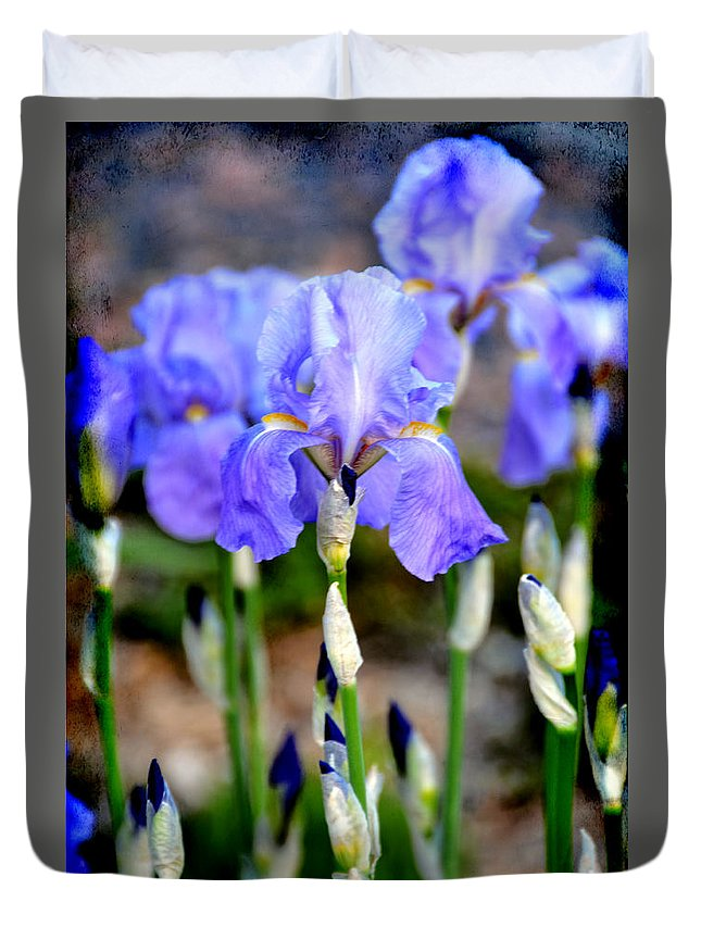 Iris Duvet Cover featuring the photograph Communing by Angelina Vick