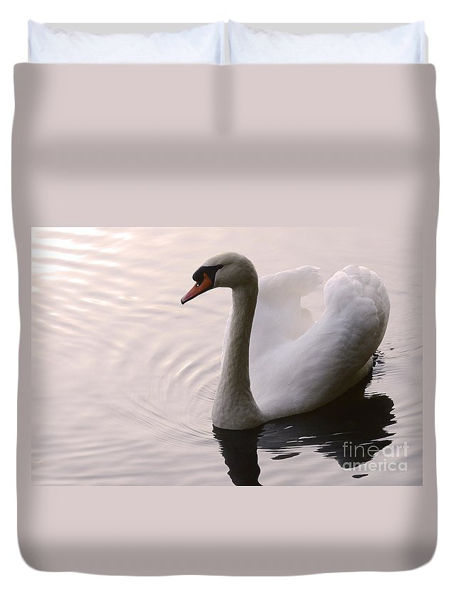 Swan Duvet Cover featuring the photograph Completely Elegant by Bob Christopher