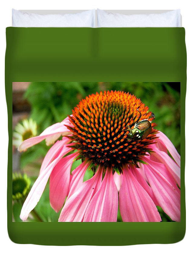 Flower Duvet Cover featuring the photograph Cone Flower And Guest by Stephanie Moore