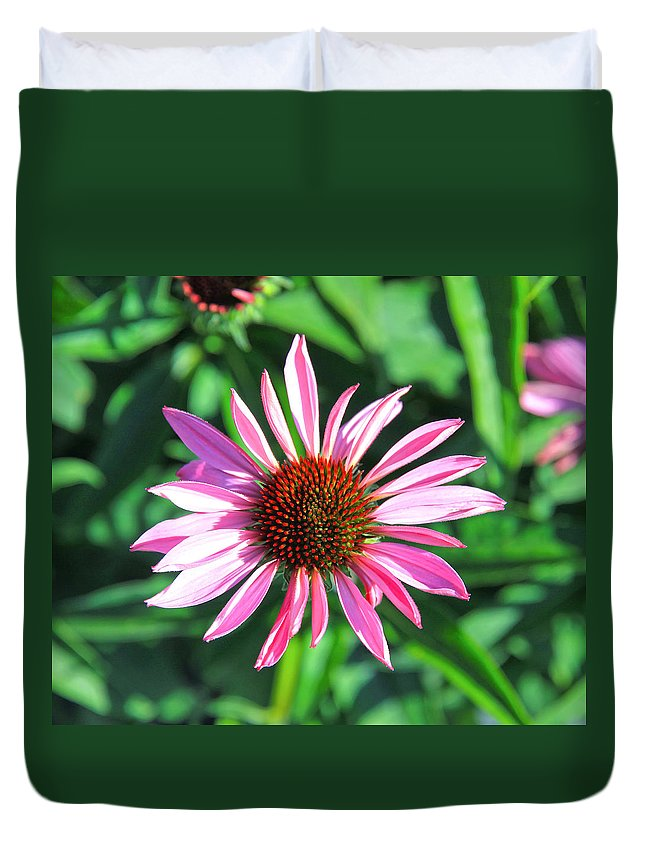 Cone Flower Duvet Cover featuring the photograph Cone Flower by Steve McKinzie