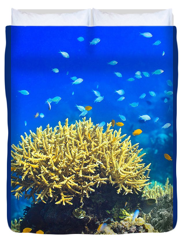 Underwater Duvet Cover featuring the photograph Coral Reef by MotHaiBaPhoto Prints