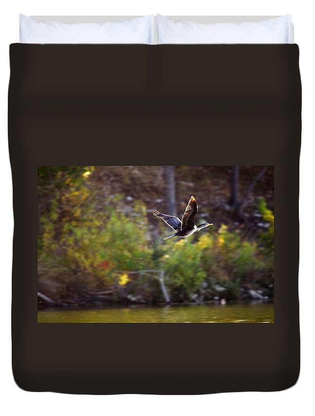 Bird Duvet Cover featuring the photograph Cormorant Flight Series - 2 by Roy Williams