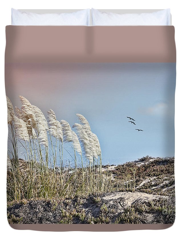 Pampas Grass Duvet Cover featuring the photograph Coronado Island Pampas Grass by Betty LaRue