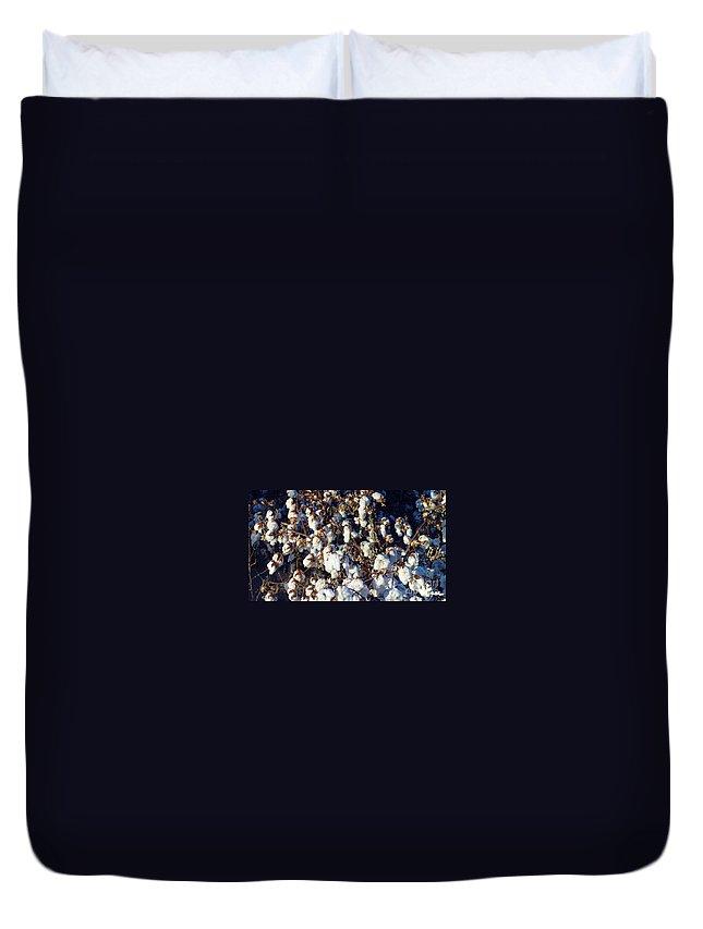 Cotton The Thread That Binds Duvet Cover featuring the photograph Cotton The Thread That Binds by Feile Case
