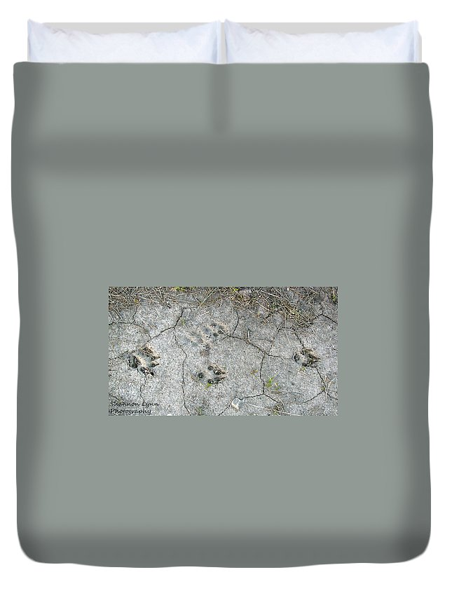 Coyote Duvet Cover featuring the photograph Coyote Tracks by Shannon Nolting