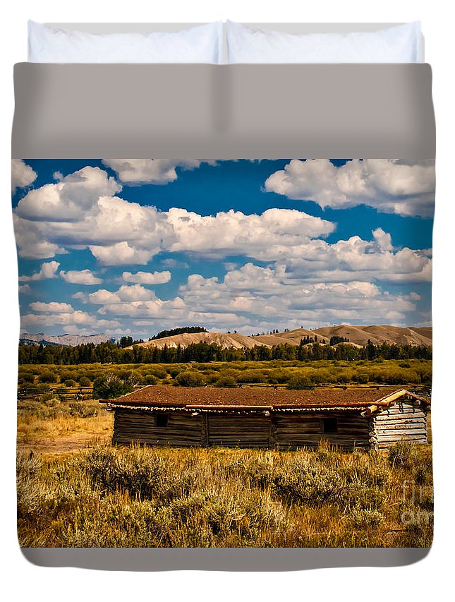 Cabin Duvet Cover featuring the photograph Cunningham Cabin II by Robert Bales